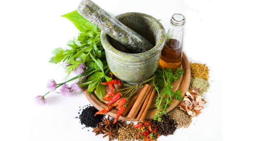plantas medicinales para depurar los riñones