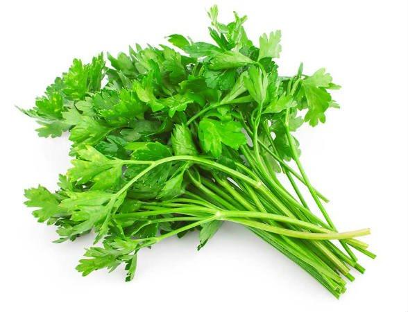 planta medicinal perejil para bajar de peso