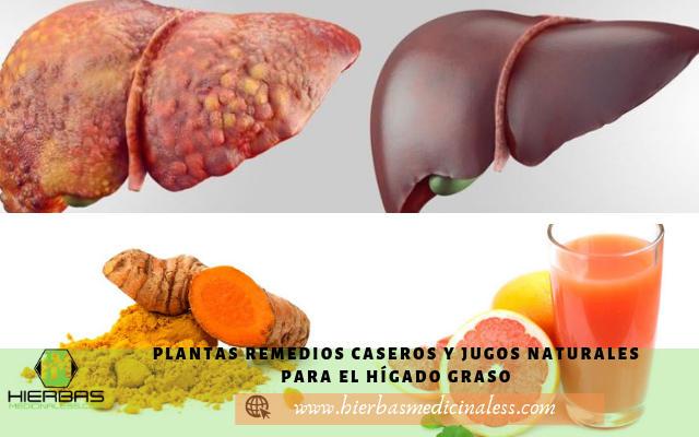 remedios caseros y plantas medicinales para el higado graso
