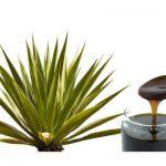 Beneficios del agave o maguey