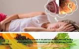 Como eliminar parásitos intestinales rápidamente